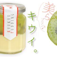キウイ|ちゅらプリン 480円(税別)