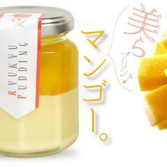マンゴー|ちゅらプリン 480円(税別)