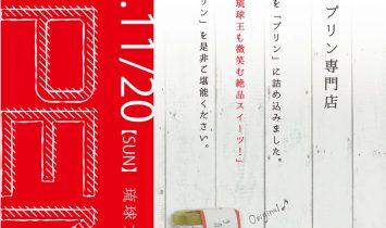 琉球プディングチラシ表